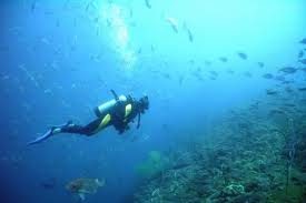 SummitClimb Link Exchange-Scuba Diving and Snorkeling