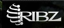 SummitClimb Link Exchange-http://www.ribzwear.com