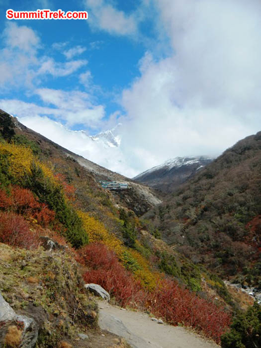 Autumn colours along the trail to Everest Basecamp. Photo by Sangeeta Sindhi