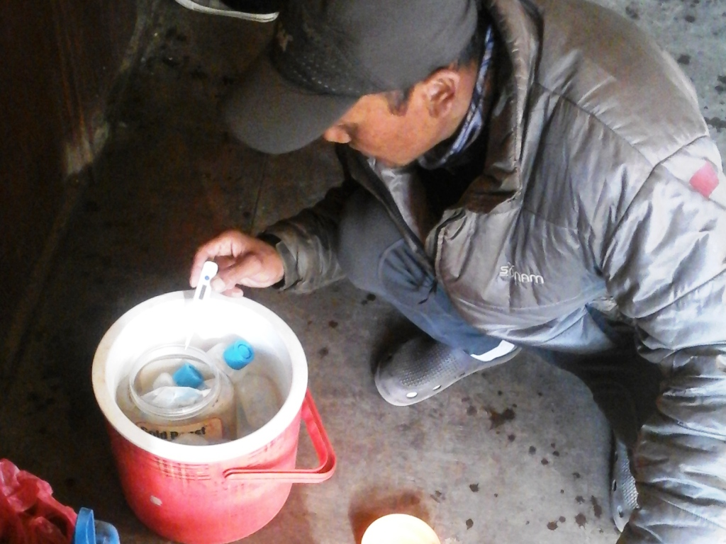 Thile Nuru Sherpa prepares the petri dishes for incubation