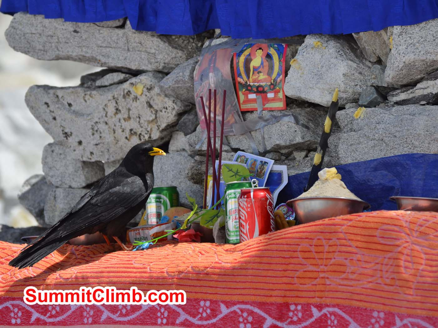Raven enjoys prayer ceremony at basecamp. Dmitri Nichiporov photo