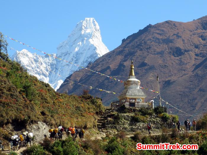 Stupa, AmaDablam, trekkers, yaks all in Khumbu Valley. Photo Nicole