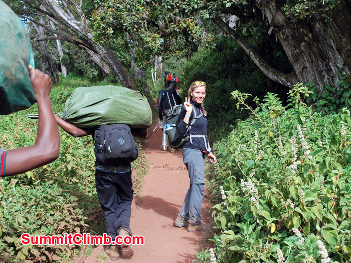 Jungle safari while Kilimanjaro expedition