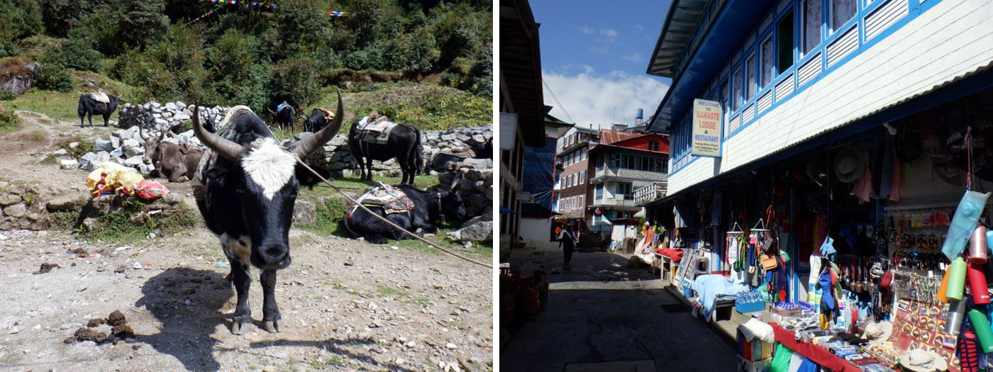 Jokiyo at Lukla. Lukla Stree