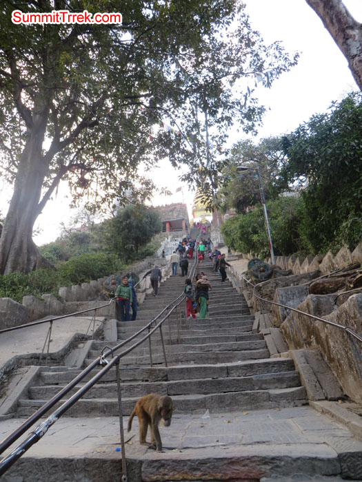 Long stairs to reach Shoyambhu Nath. Photo Aless.