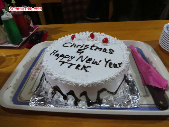 Christmas New Year Cake. Photo Aless.
