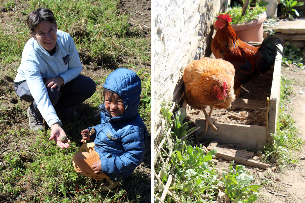 Dr. Jen enjoying with kid Chicken farming