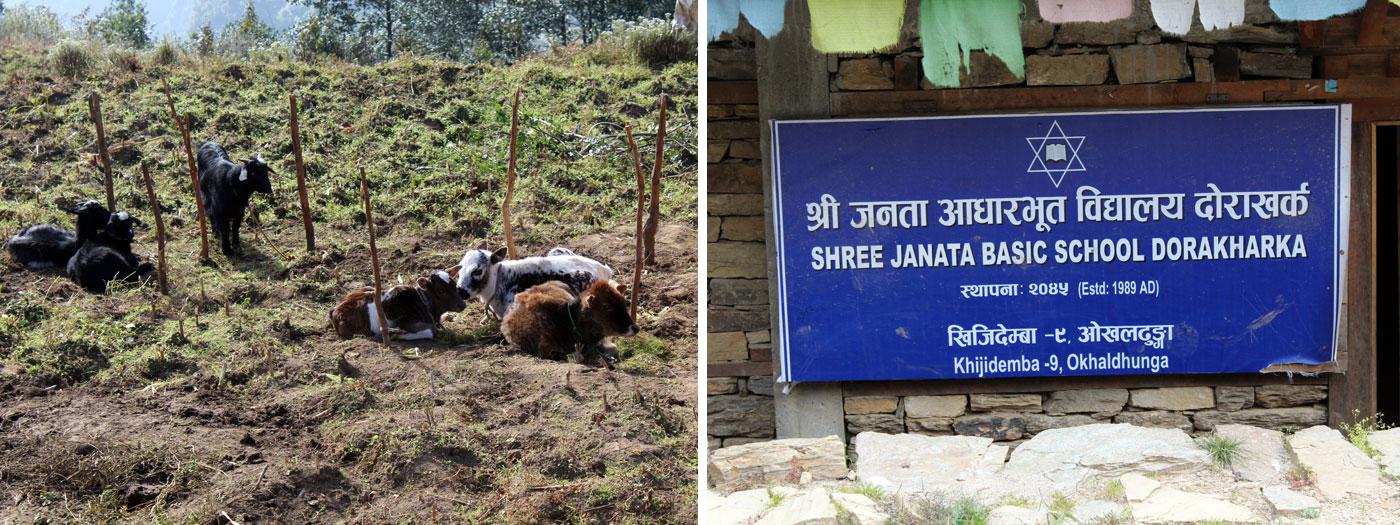 Farming at village hoarding board